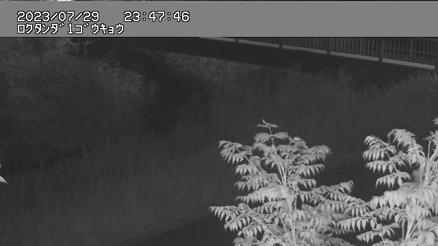 広田川(幸田駅西人道橋)の画像